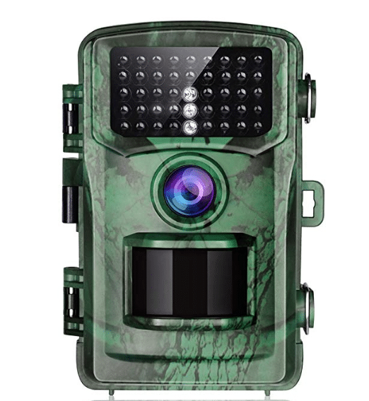 what is a trail camera
